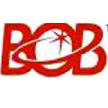 BOB TECHNOLOGY (HK)INT'L GROUP LIMITED